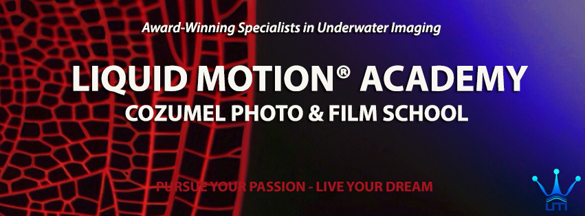 liquid-motion-academy-master
