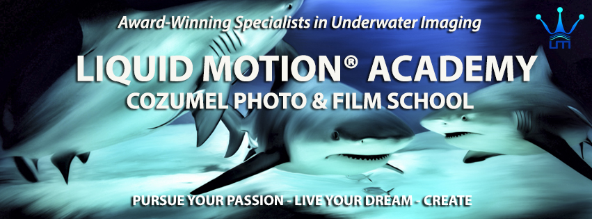 liquid-motion-academy-master2